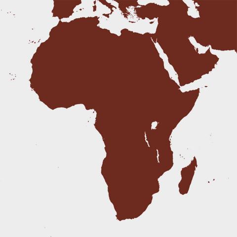 Kaffee aus Afrika online kaufen