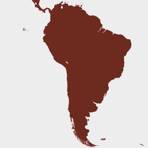 Kaffee aus Südamerika online kaufen
